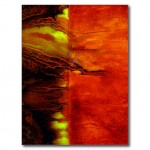 postcard_or_note_card_in_energizing_red-r18d3548f7a0048c2b18bd22f935fe636_vgbaq_8byvr_512
